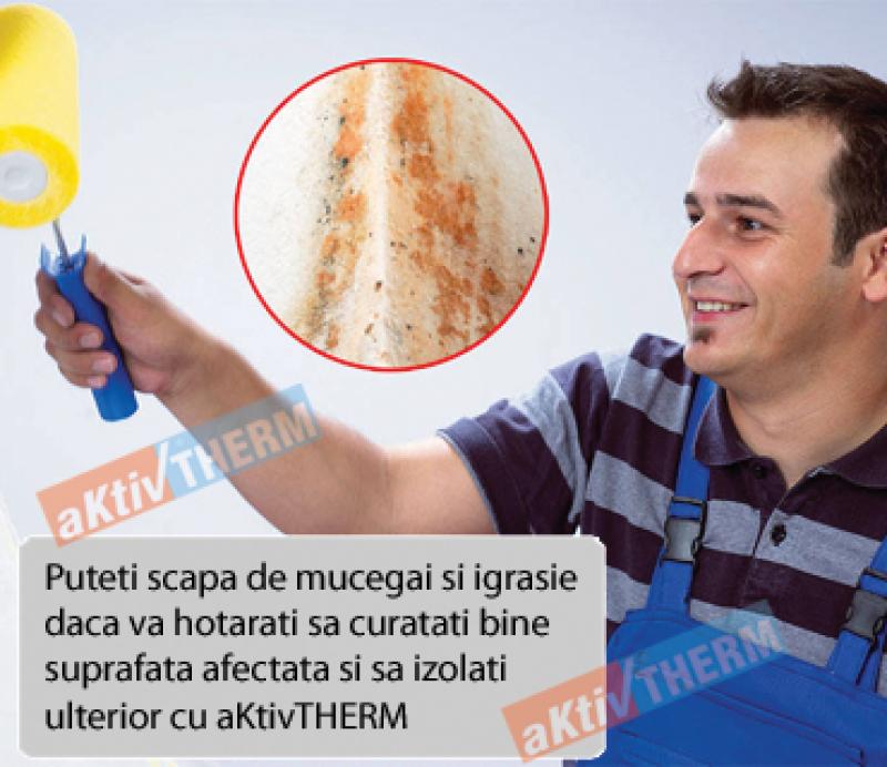 <p>Eliminarea mucegaiului din locuinte</p>